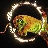 Цирки в Хлевном